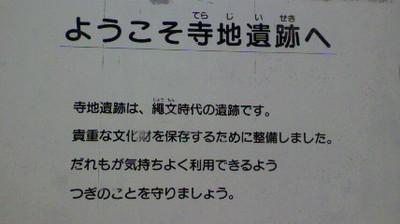 2011041512390000