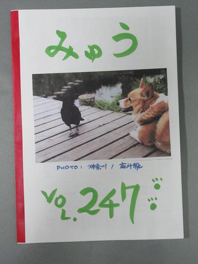 I4mg_6117