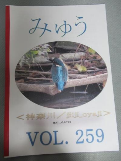 4img_2681